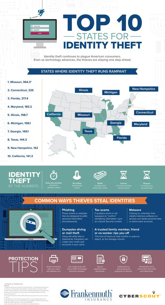 cyberscout_frankenmuth_10_states_infographic_vertical-556x1024